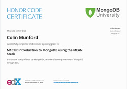 MongoDB using the MEAN stack
